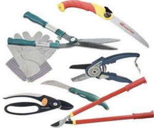 инструменты для обрезки смородины