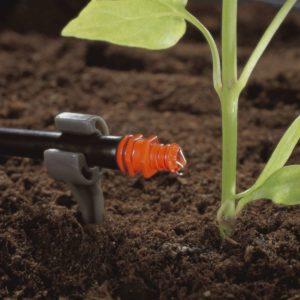 капельный полив под корень