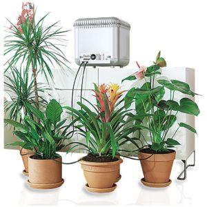 капельный полив комнатных растений