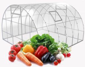 теплица и овощи