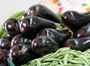 созревание плодов баклажан