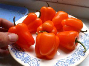 перец оранжевого цвета на тарелке