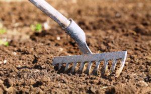 подготовка почвы для кабачков