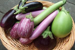 Баклажаны - польза и вред для здоровья и внешности человека
