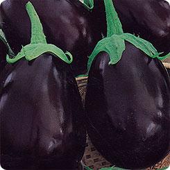 особенности выращивания сорта щелкунчик