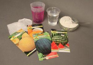 подготовка семян арбуза