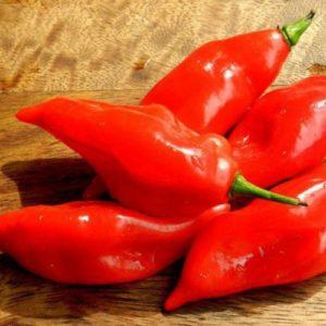хабанеро перец