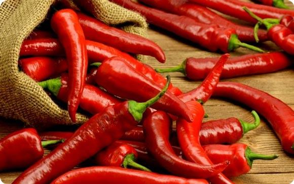 красный едкий перец