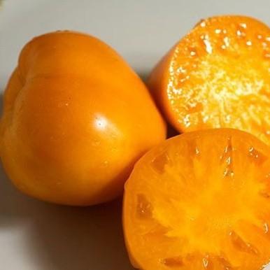 томат Янтарное сердце