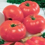 четыре розовых томата