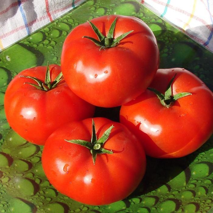 четыре красных спелых томата