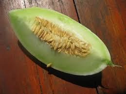 тайская дыня