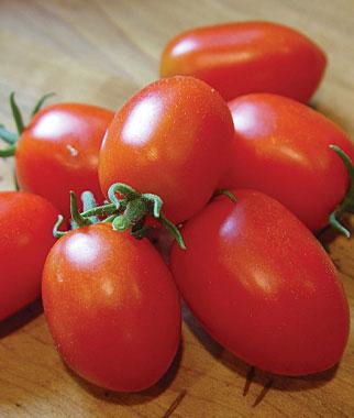 томаты для консервирования