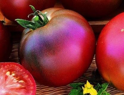 томат Черная лакомка