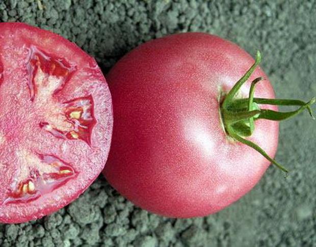 помидор розового цвета