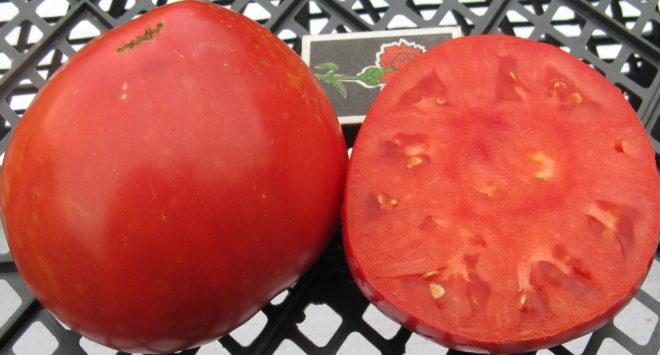 томат Сахарный пудовичок