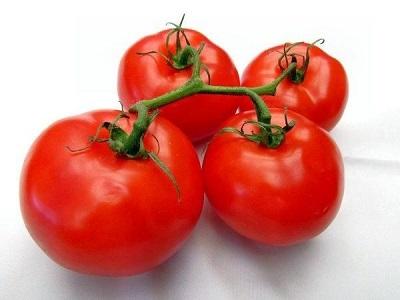 томат Cанька