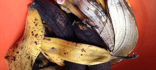 банановые шкурки в качестве удобрения