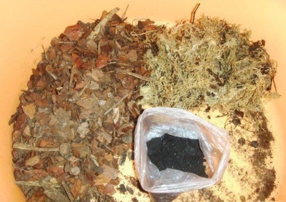 компоненты грунта для орхидей