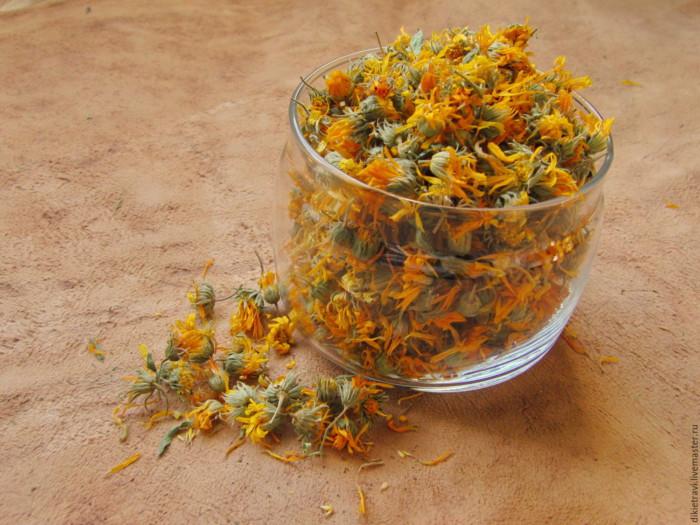 собранные цветы календулы в стакане