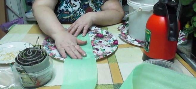 процесс скручивания рулона для рассады