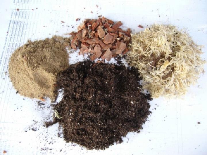 состав почвосмеси для антуриума
