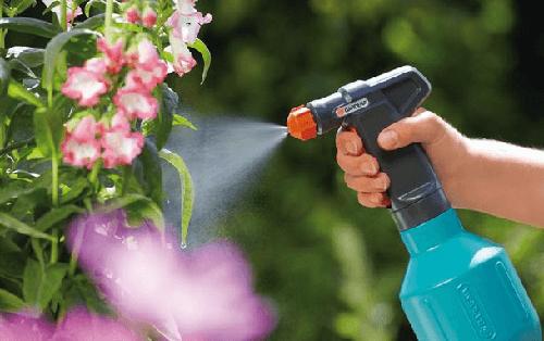 обработка растений янтарной кислотой