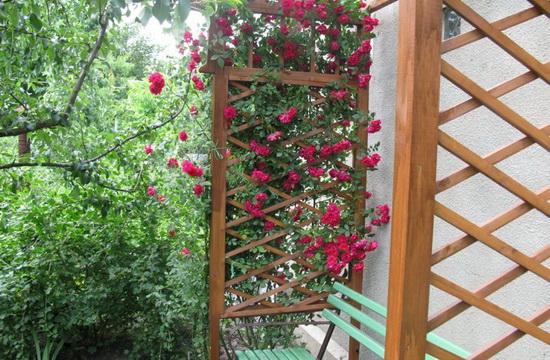 Подпорки для садовых цветов фото